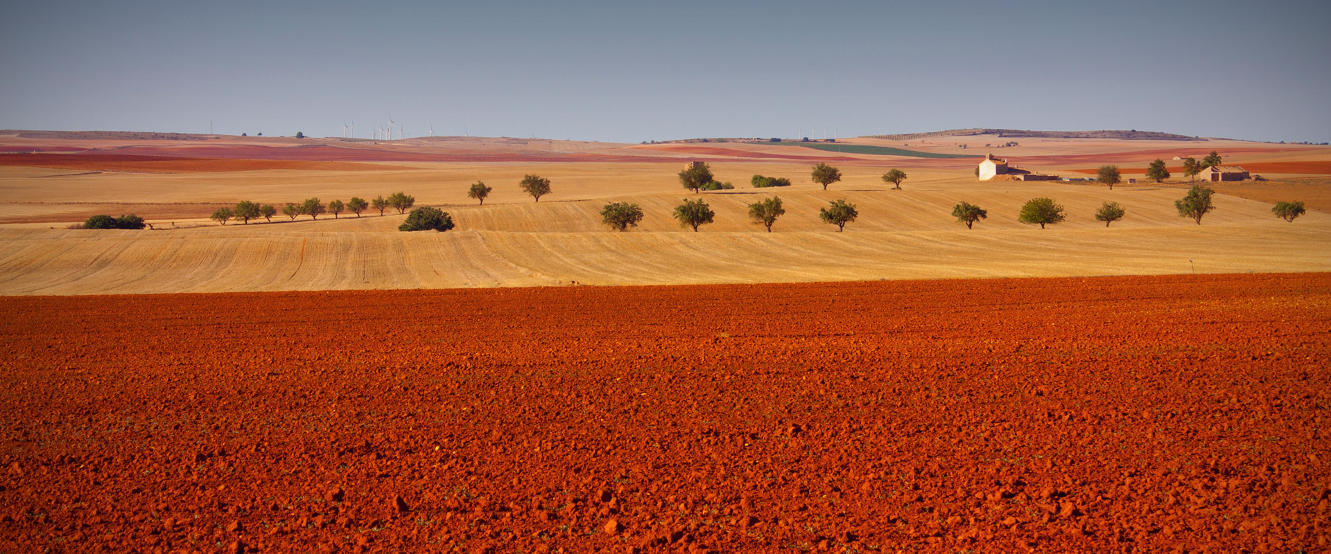 Steppe of cereal inland La Mancha